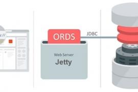 نصب و کانفیگ اوراکل اپکس در معماری ORDS Standalone